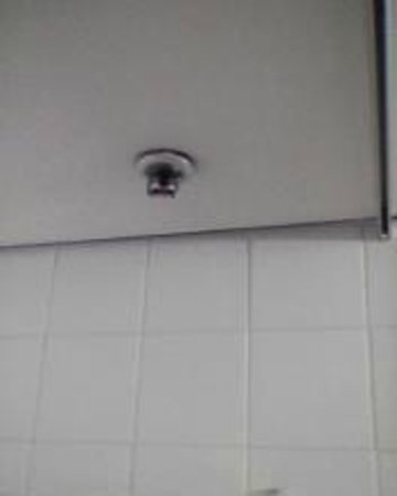 Copthorne Hotel Auckland HarbourCity : Fire sprinkler head above shower/tub