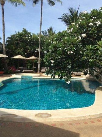Zazen Boutique Resort & Spa : poolside
