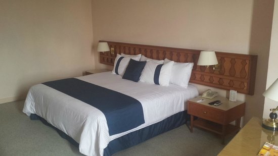 Mision Guadalajara Carlton: Bed