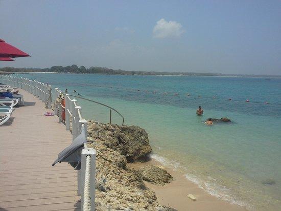 Decameron Barú: playa con peces