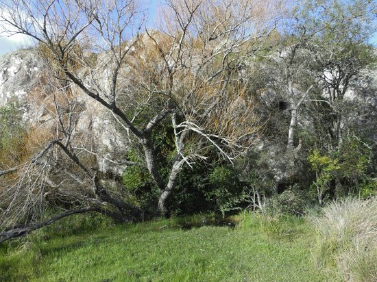 Posada Sierra de Mahoma : Mar de Piedras