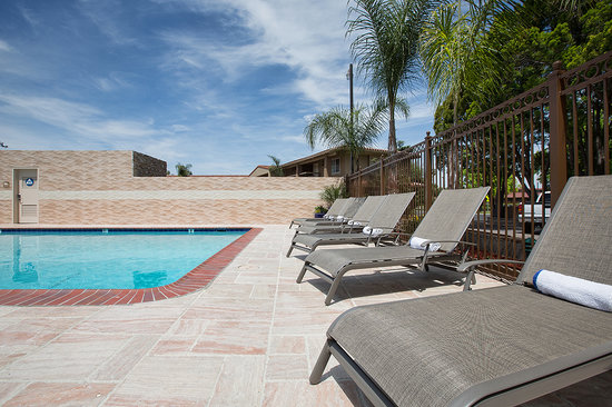 BEST WESTERN University Inn Santa Clara : Pool Chaise Lounge