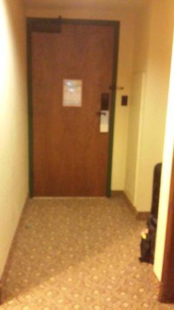 Disney's Animal Kingdom Lodge: Entrance of standard room