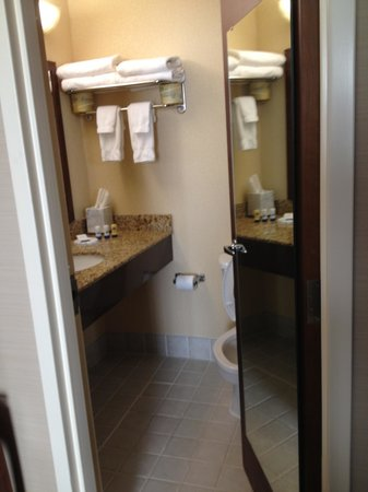 BEST WESTERN PLUS Hannaford Inn & Suites: Bathroom located off bedroom