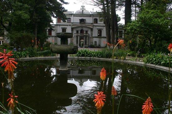 Hacienda La Cienega: House farm