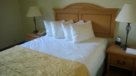 Oxford Inn Silverdale: The Queen Bed was clean and comfortable and I actually like having lots of pillows.