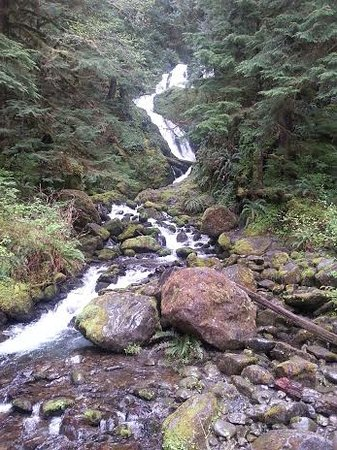 Quinault River Inn: Come to see Merriman Falls