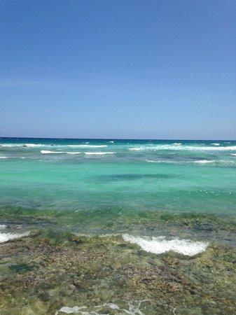 Catalonia Riviera Maya: Gorgeous Water