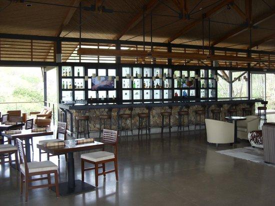 Rio Perdido: Bar