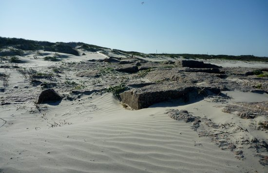 Mustang Island State Park: Along the Beach