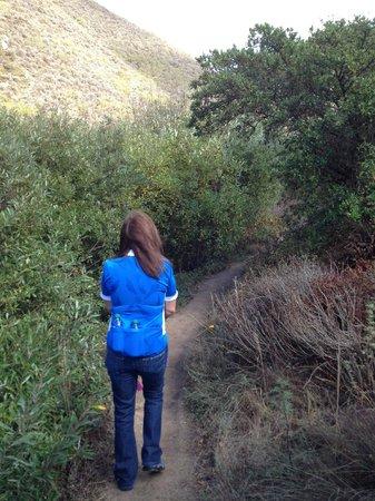 Garrapata State Park: Walking the trail