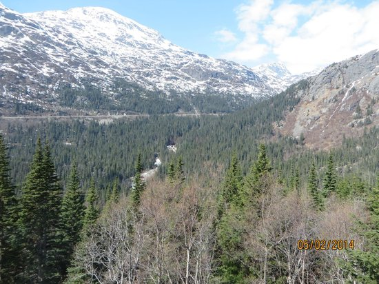 Chilkoot Charters & Tours: view