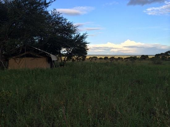 Dunia Camp, Asilia Africa: walking from the room-tent to the dining-tent. view of another room-tent and the fields.