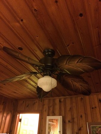 Mermaid Manor: Ceiling fan was nice but the light didn't work