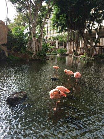 Westin Maui Resort And Spa : lobby area