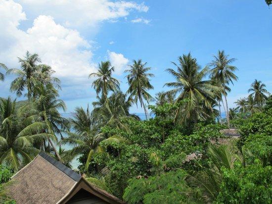 El Nido Resorts Pangulasian Island: View from canopy villa