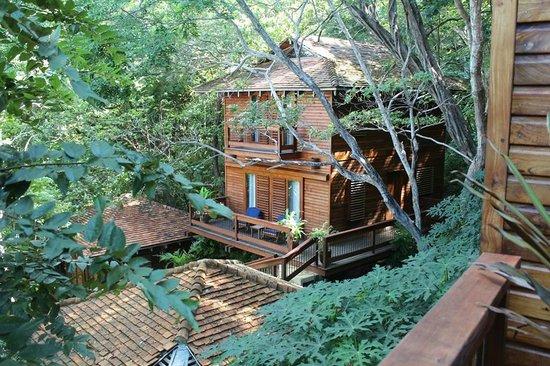 Aqua Wellness Resort: Treehouse