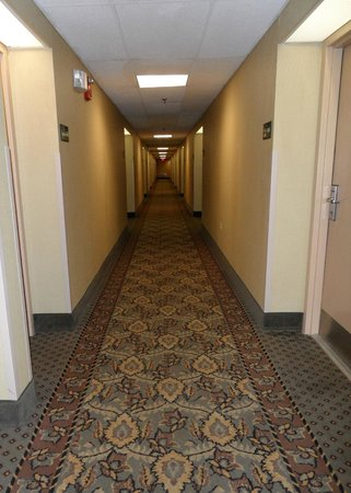 Hampton Inn Milford: Second Floor Hallway:  In need of an upgrade?