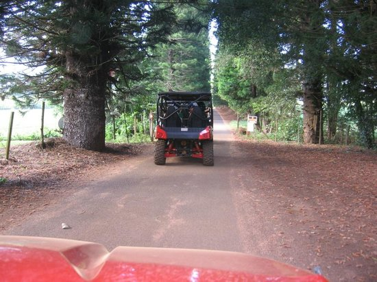 Kipu Ranch Adventures : on the trail