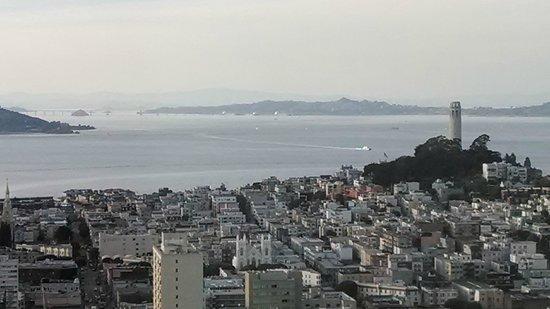 Grand Hyatt San Francisco : View from the top floor
