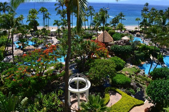 The Westin Maui Resort & Spa : View from Room 829