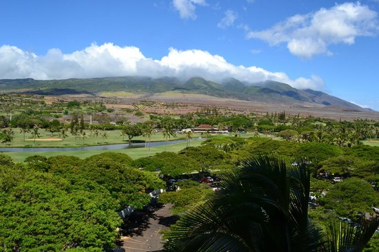 The Westin Maui Resort & Spa : View from a room across the hall from Room 829.