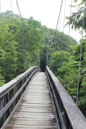 Morgan's Rock Hacienda and Ecolodge: Bridge to rooms