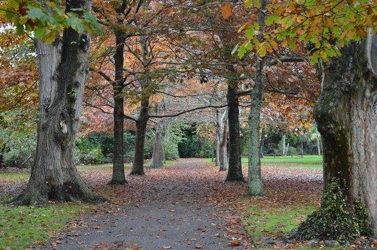 Victoria Esplanade Gardens: Gorgeous autumn colours