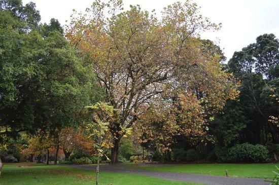 Victoria Esplanade Gardens: Beautiful park