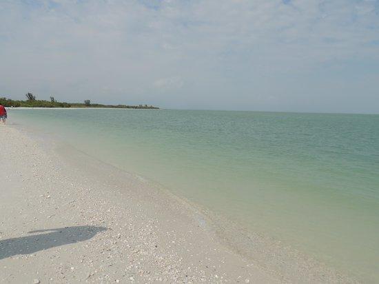 Marco Island Water Sports: The island where we shelled.  GORGEOUS!!!
