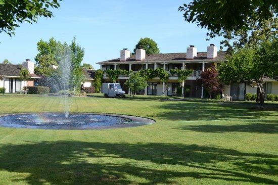 Silverado Resort and Spa: Hotel grounds