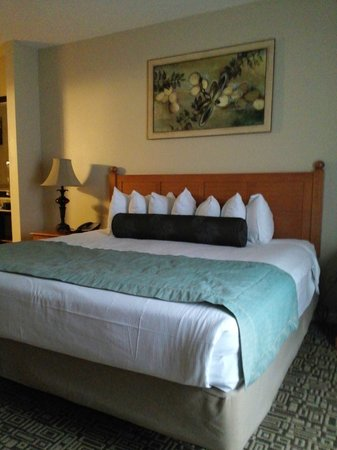 Wyndham Cypress Palms: Bedroom