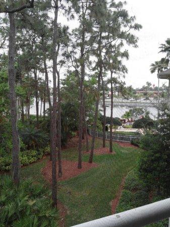Wyndham Cypress Palms: View from Balcony