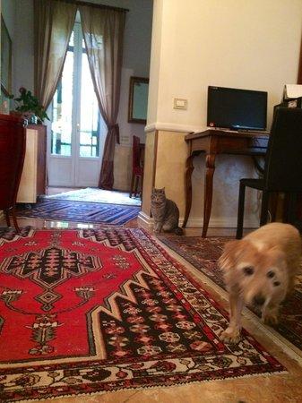 Aldebaran Bed & Breakfast: Friendly hosts
