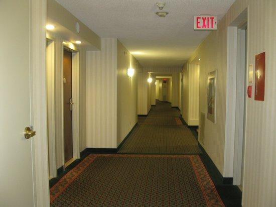 Niagara Falls Marriott Fallsview Hotel & Spa : Hallway