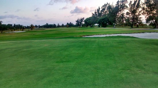 Laguna Suites Golf & Spa: Vista al campo de golf