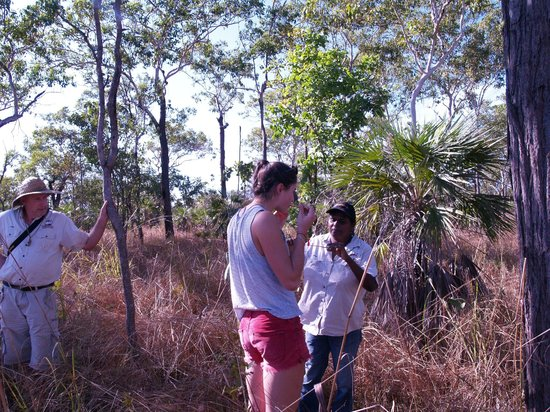 Northern Territory Indigenous Day Tours: Termite mounds taste testing