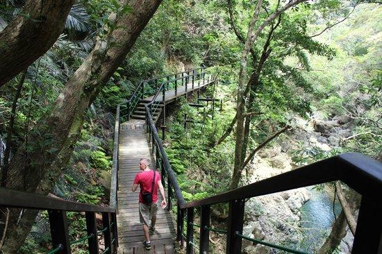 Hiji waterfall: The hike to Hiji Falls