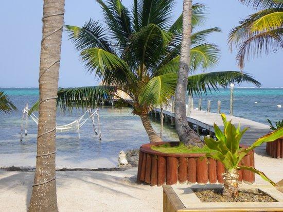 Portofino Beach Resort: veiw from bar patio/beach