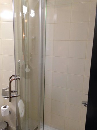 ibis Amman: shower box