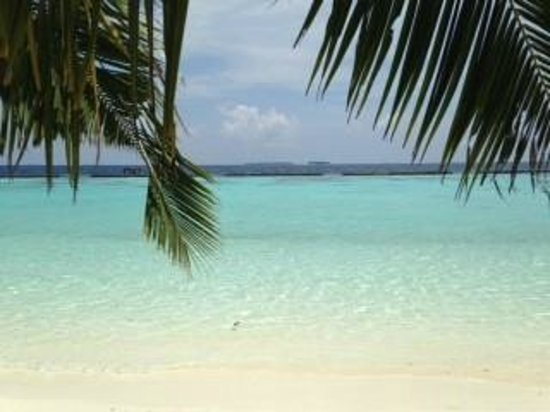 Kurumba Maldives: Beach near room 211