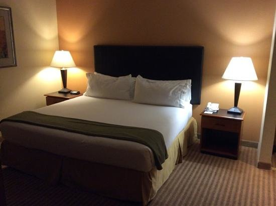 Holiday Inn Express Hotel & Suites-DFW North: bedroom