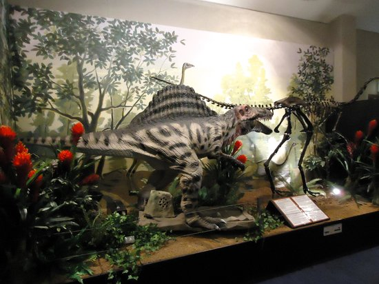 National Dinosaur Museum: One of the excellent sound and motion models