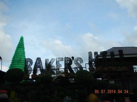 Baker's Hill: Grass art