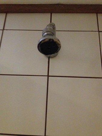 Novotel Suva Lami Bay : Shower head