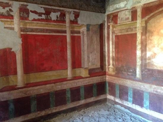 House of Augustus: Vibrant Colours