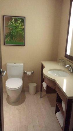 Sheraton Le Centre Montreal Hotel : Bathroom