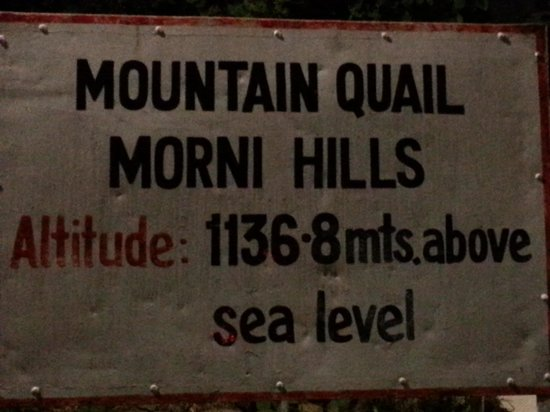 Hariana, India: Morni Hills Hotel