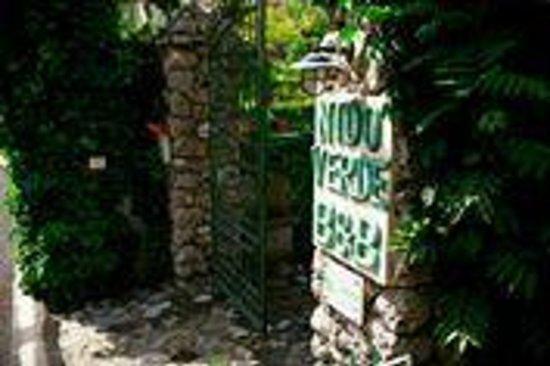 Nido Verde: Garden