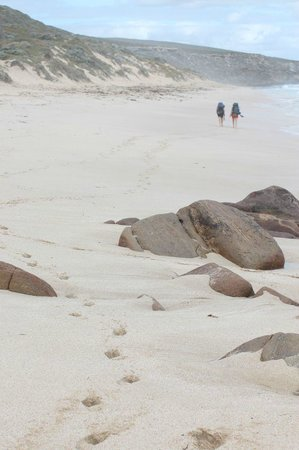 Cape to Cape Explorer Tours: Nice to take the shoes off